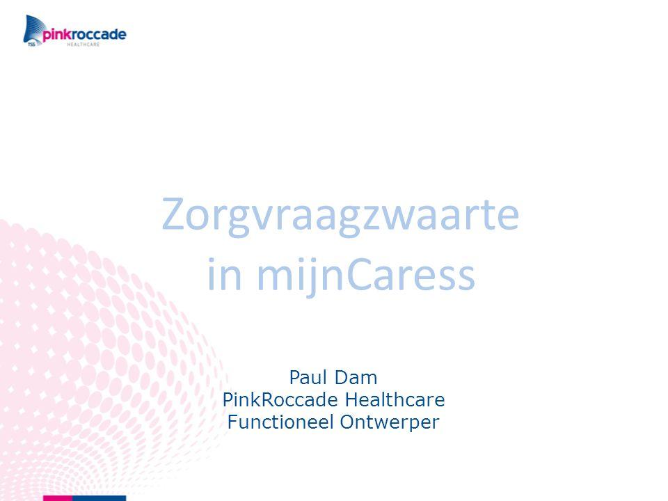 Paul Dam PinkRoccade Healthcare Functioneel Ontwerper Zorgvraagzwaarte in mijnCaress