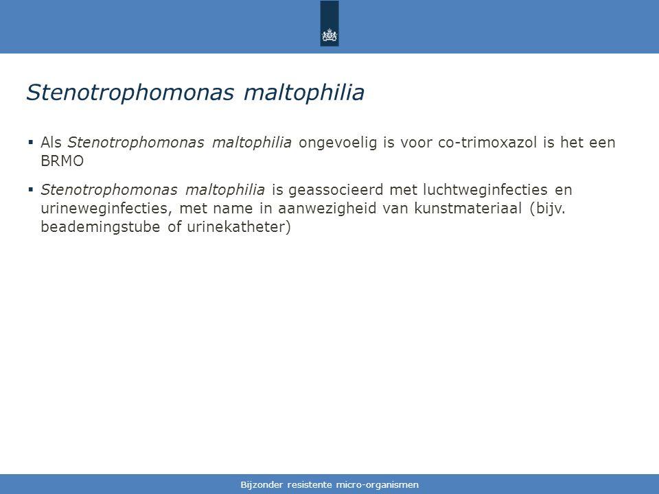 Tekst / één afbeelding Stenotrophomonas maltophilia  Als Stenotrophomonas maltophilia ongevoelig is voor co-trimoxazol is het een BRMO  Stenotrophomonas maltophilia is geassocieerd met luchtweginfecties en urineweginfecties, met name in aanwezigheid van kunstmateriaal (bijv.