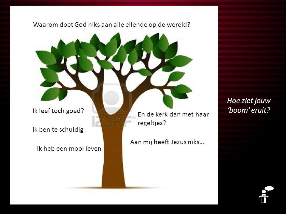 Hoe ziet jouw 'boom' eruit. Waarom doet God niks aan alle ellende op de wereld.