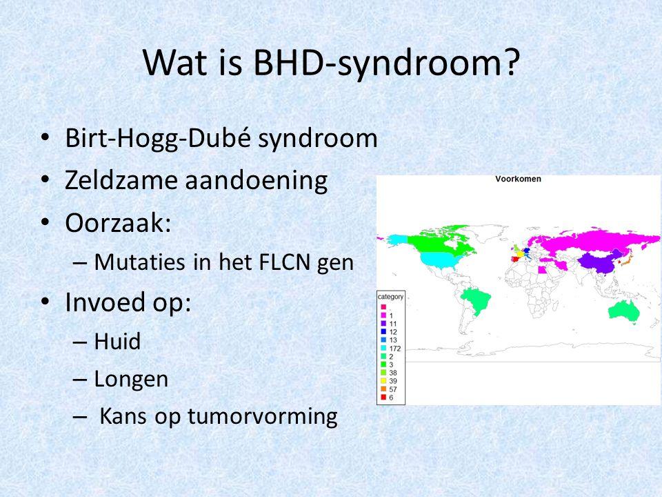 Wat is BHD-syndroom? Birt-Hogg-Dubé syndroom Zeldzame aandoening Oorzaak: – Mutaties in het FLCN gen Invoed op: – Huid – Longen – Kans op tumorvorming