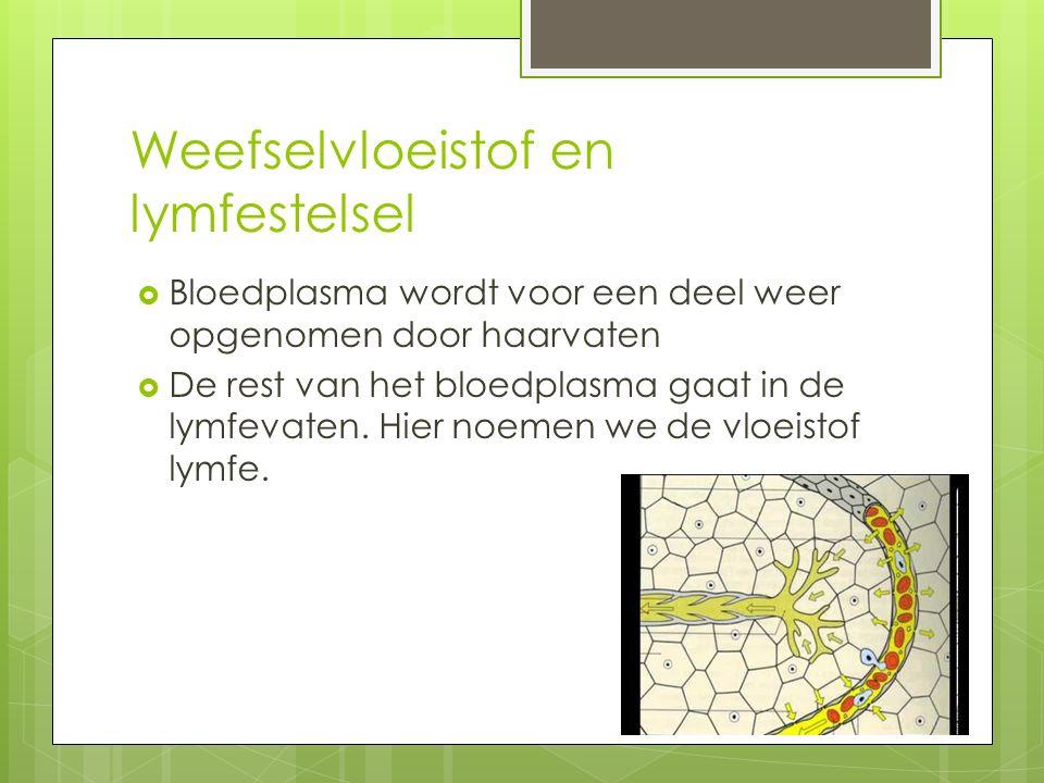 Weefselvloeistof en lymfestelsel  Bloedplasma wordt voor een deel weer opgenomen door haarvaten  De rest van het bloedplasma gaat in de lymfevaten.