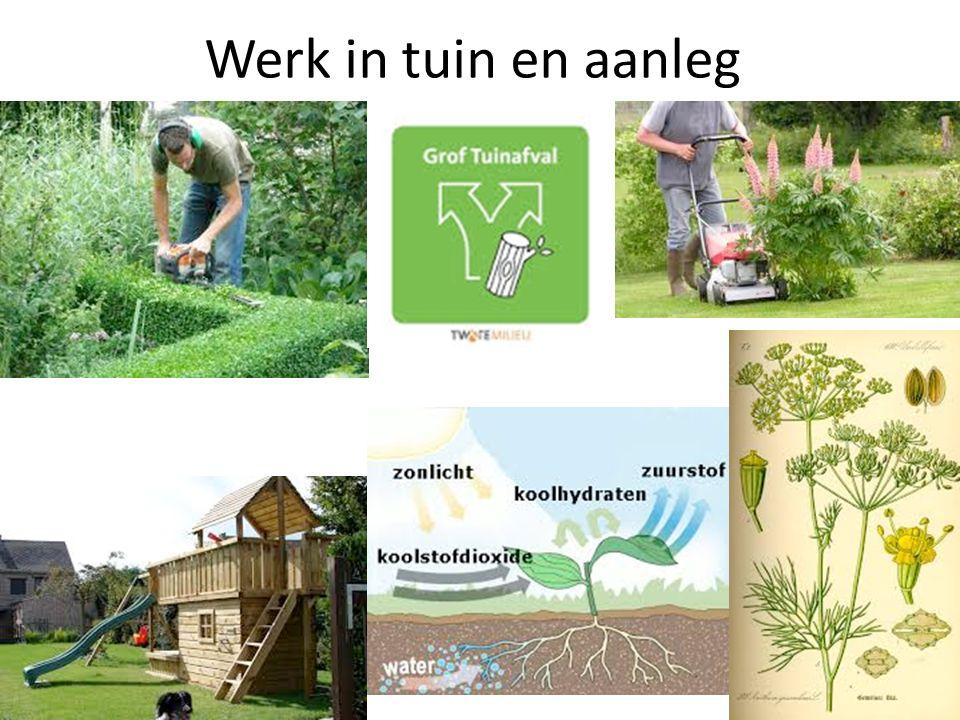 Werk in tuin en aanleg