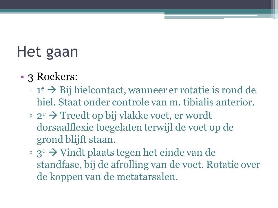 Het gaan 3 Rockers: ▫1 e  Bij hielcontact, wanneer er rotatie is rond de hiel. Staat onder controle van m. tibialis anterior. ▫2 e  Treedt op bij vl
