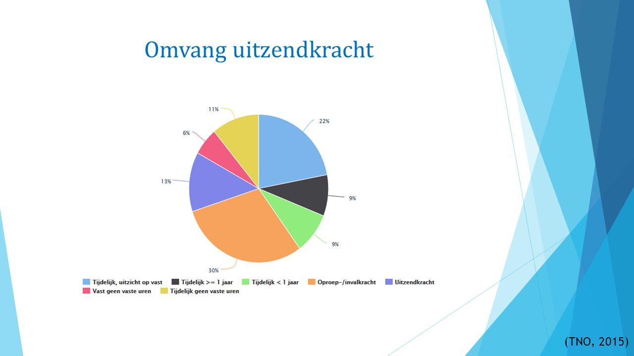 Omvang uitzendkracht (TNO, 2015)