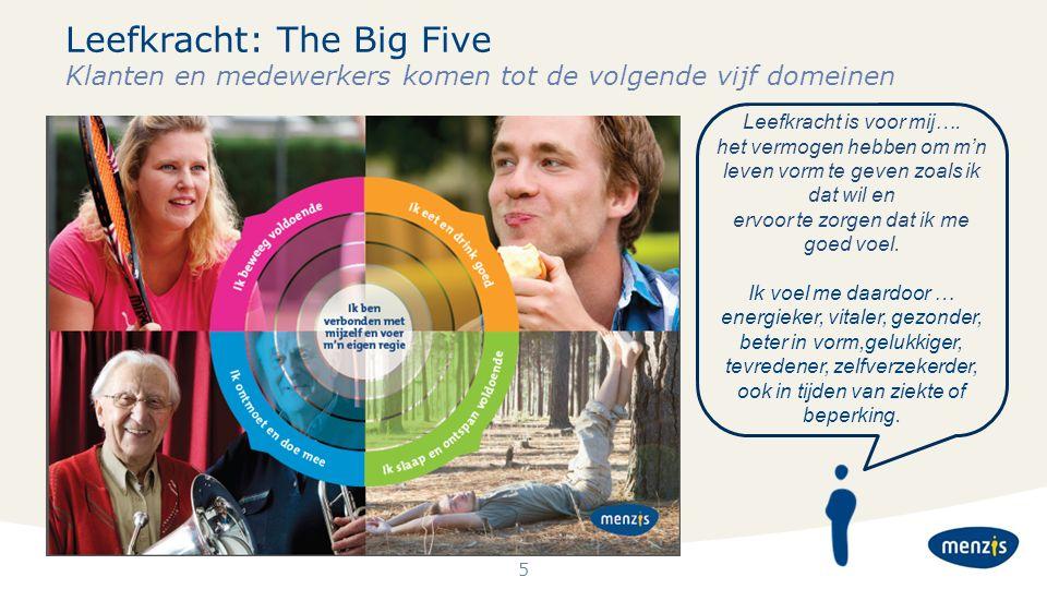 5 Leefkracht: The Big Five Klanten en medewerkers komen tot de volgende vijf domeinen Leefkracht is voor mij…. het vermogen hebben om m'n leven vorm t