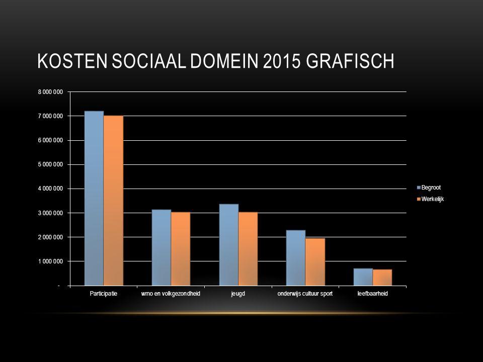 KOSTEN SOCIAAL DOMEIN 2015 GRAFISCH