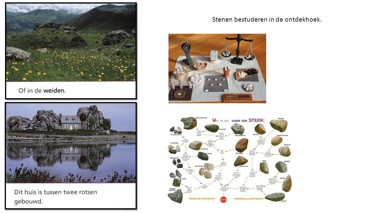 Stenen bestuderen in de ontdekhoek.