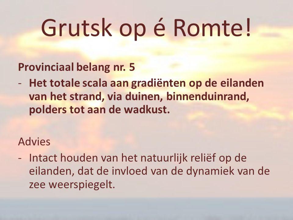 Grutsk op é Romte! Provinciaal belang nr. 5 ‐Het totale scala aan gradiënten op de eilanden van het strand, via duinen, binnenduinrand, polders tot aa