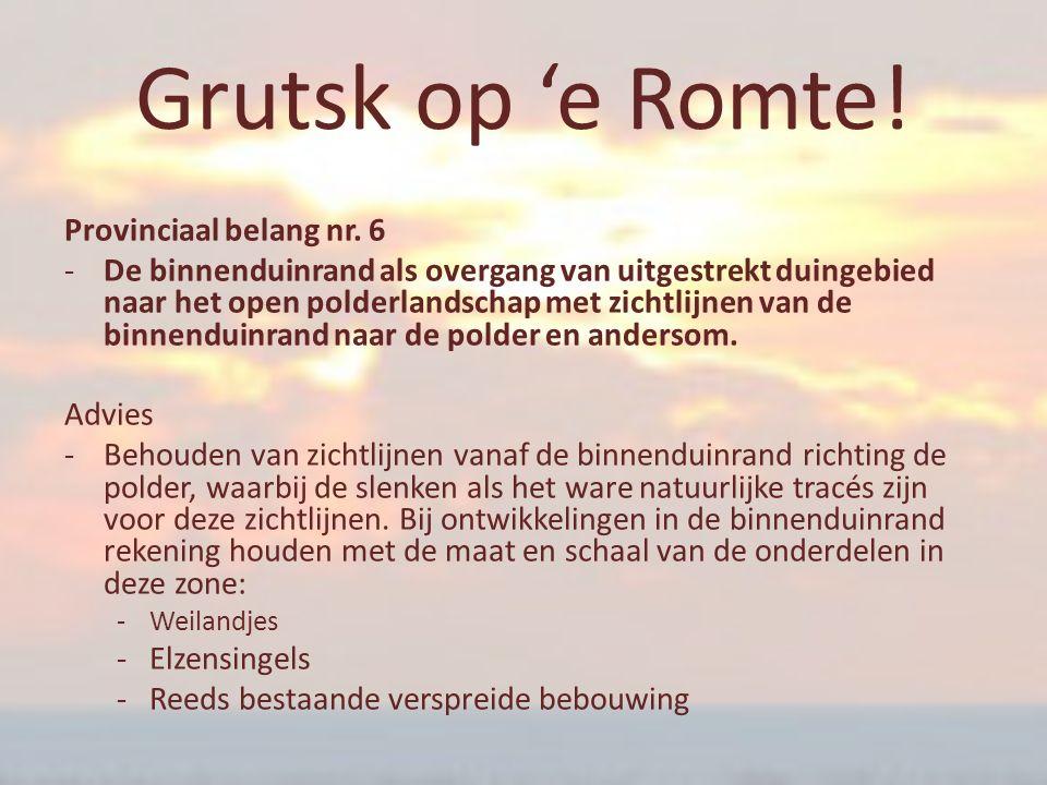Grutsk op 'e Romte! Provinciaal belang nr. 6 ‐De binnenduinrand als overgang van uitgestrekt duingebied naar het open polderlandschap met zichtlijnen