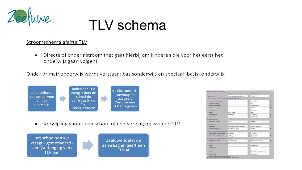 TLV schema