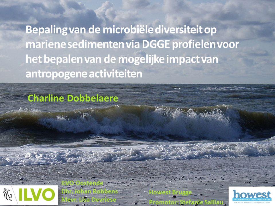 Bepaling van de microbiële diversiteit op mariene sedimenten via DGGE profielen voor het bepalen van de mogelijke impact van antropogene activiteiten Howest Brugge Promotor: Stefanie Salliau ILVO Oostende Dhr.