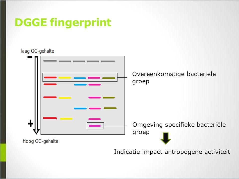 DGGE fingerprint Overeenkomstige bacteriële groep Omgeving specifieke bacteriële groep Indicatie impact antropogene activiteit