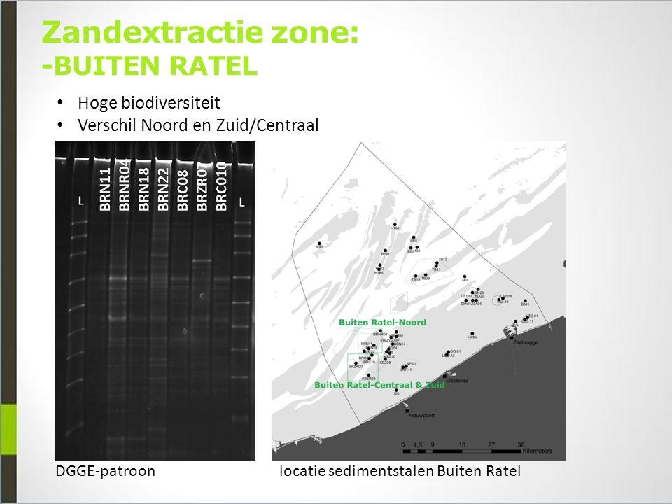 Zandextractie zone: -BUITEN RATEL Hoge biodiversiteit Verschil Noord en Zuid/Centraal locatie sedimentstalen Buiten RatelDGGE-patroon