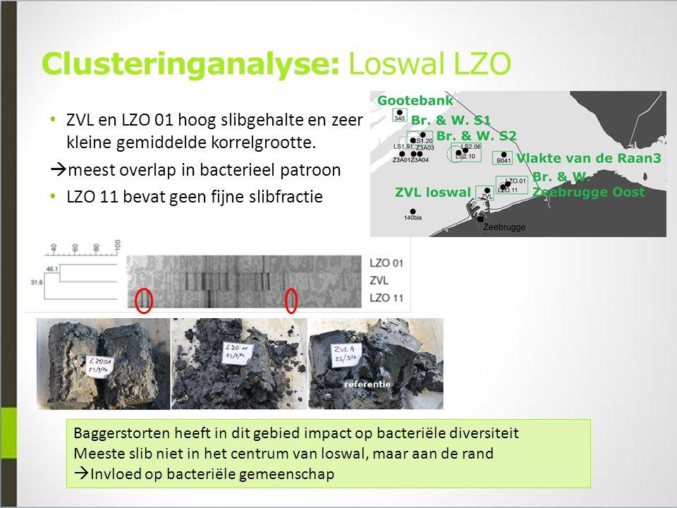 Clusteringanalyse: Loswal LZO ZVL en LZO 01 hoog slibgehalte en zeer kleine gemiddelde korrelgrootte.