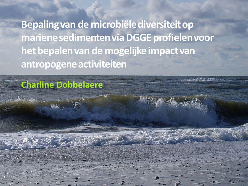 Bepaling van de microbiële diversiteit op mariene sedimenten via DGGE profielen voor het bepalen van de mogelijke impact van antropogene activiteiten Charline Dobbelaere