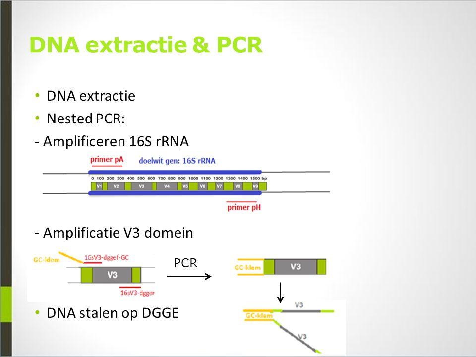 Principe DGGE Denaturerende gradiënt gelelektroforese Op basis van sequentie Denaturerende agentia Gedenatureerd DNA  lagere mobiliteit GC-klem (40 bp)
