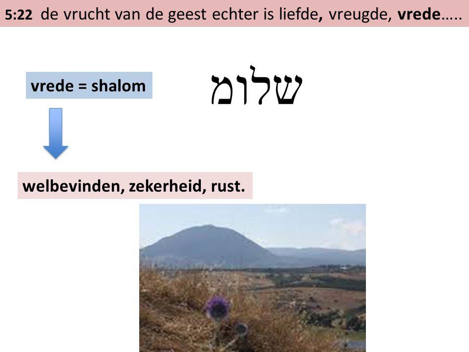 5:22 de vrucht van de geest echter is liefde, vreugde, vrede….. vrede = shalom שלומ welbevinden, zekerheid, rust.