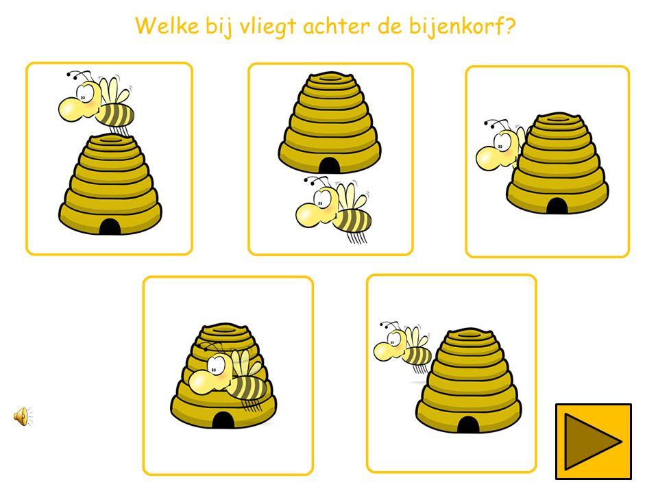 Welke bij vliegt achter de bijenkorf?
