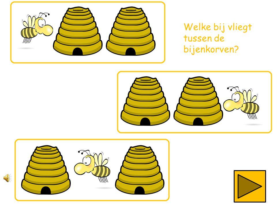 Welke bij vliegt tussen de bijenkorven?