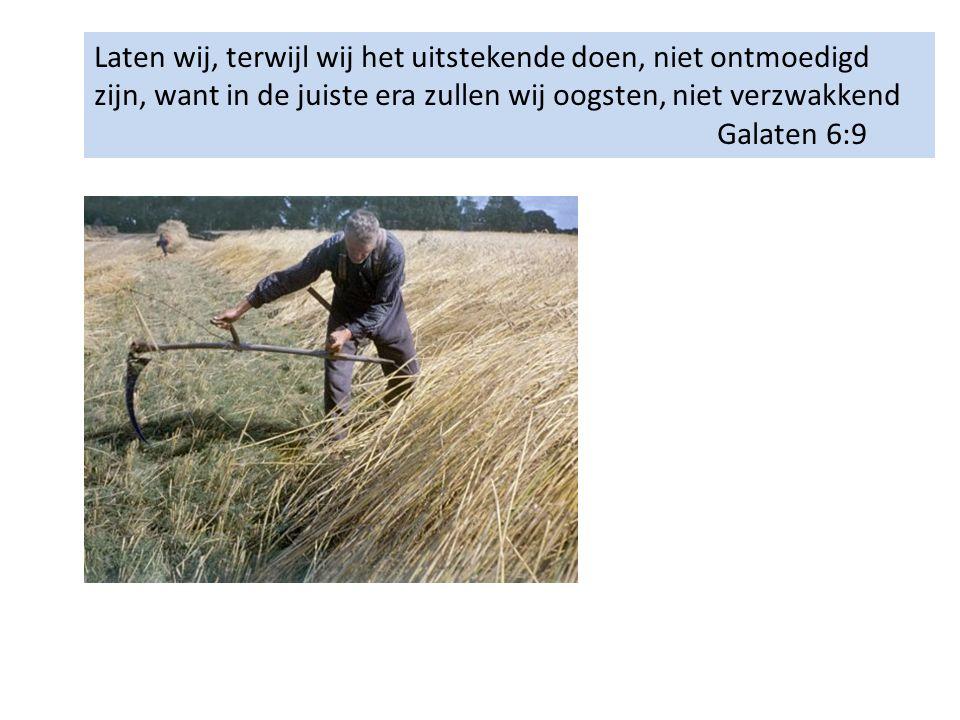 Laten wij, terwijl wij het uitstekende doen, niet ontmoedigd zijn, want in de juiste era zullen wij oogsten, niet verzwakkend Galaten 6:9