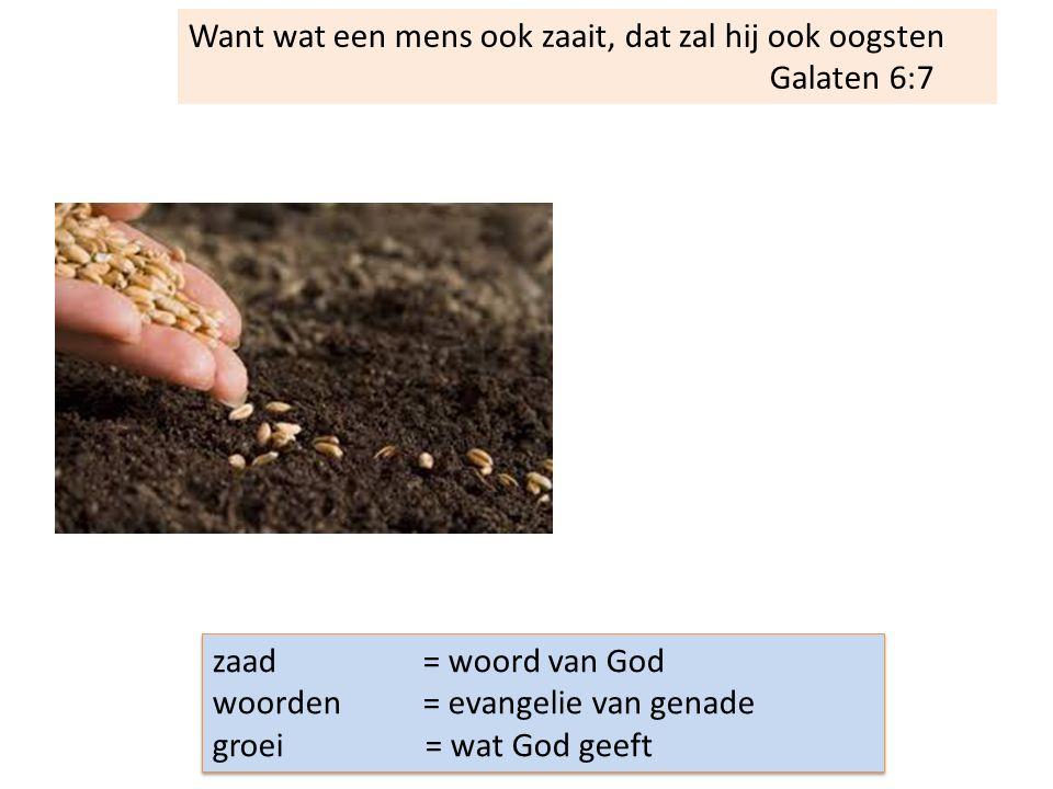 Want wat een mens ook zaait, dat zal hij ook oogsten Galaten 6:7 zaad = woord van God woorden = evangelie van genade groei = wat God geeft