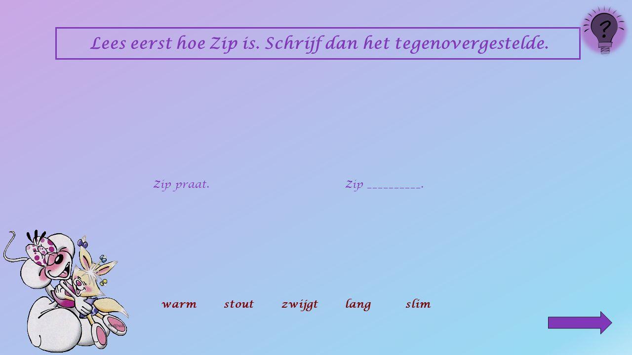 Lees eerst hoe Zip is. Schrijf dan het tegenovergestelde.