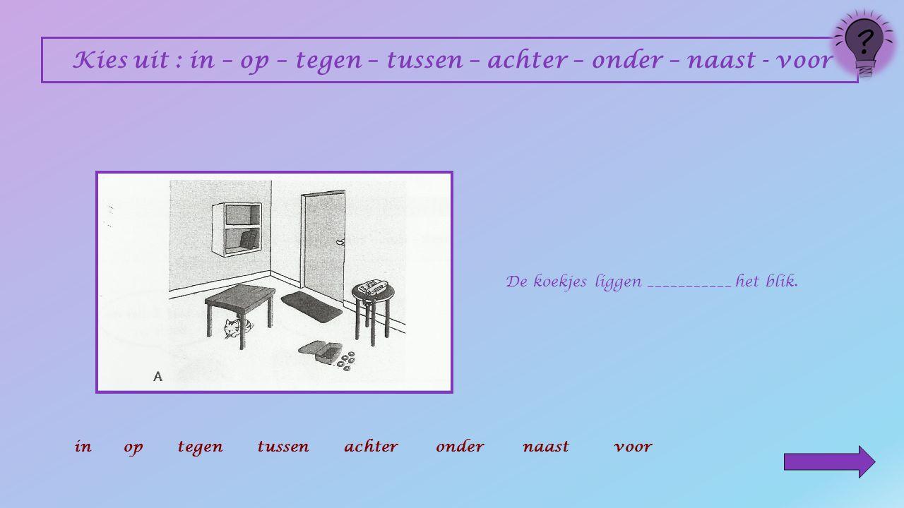 Kies uit : in – op – tegen – tussen – achter – onder – naast - voor Het boek staat _________ het rek.