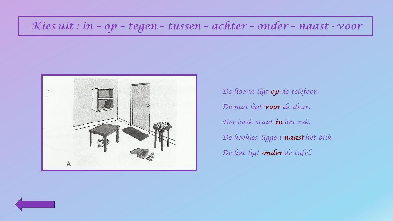 Kies uit : in – op – tegen – tussen – achter – onder – naast - voor De kat ligt __________ de tafel.