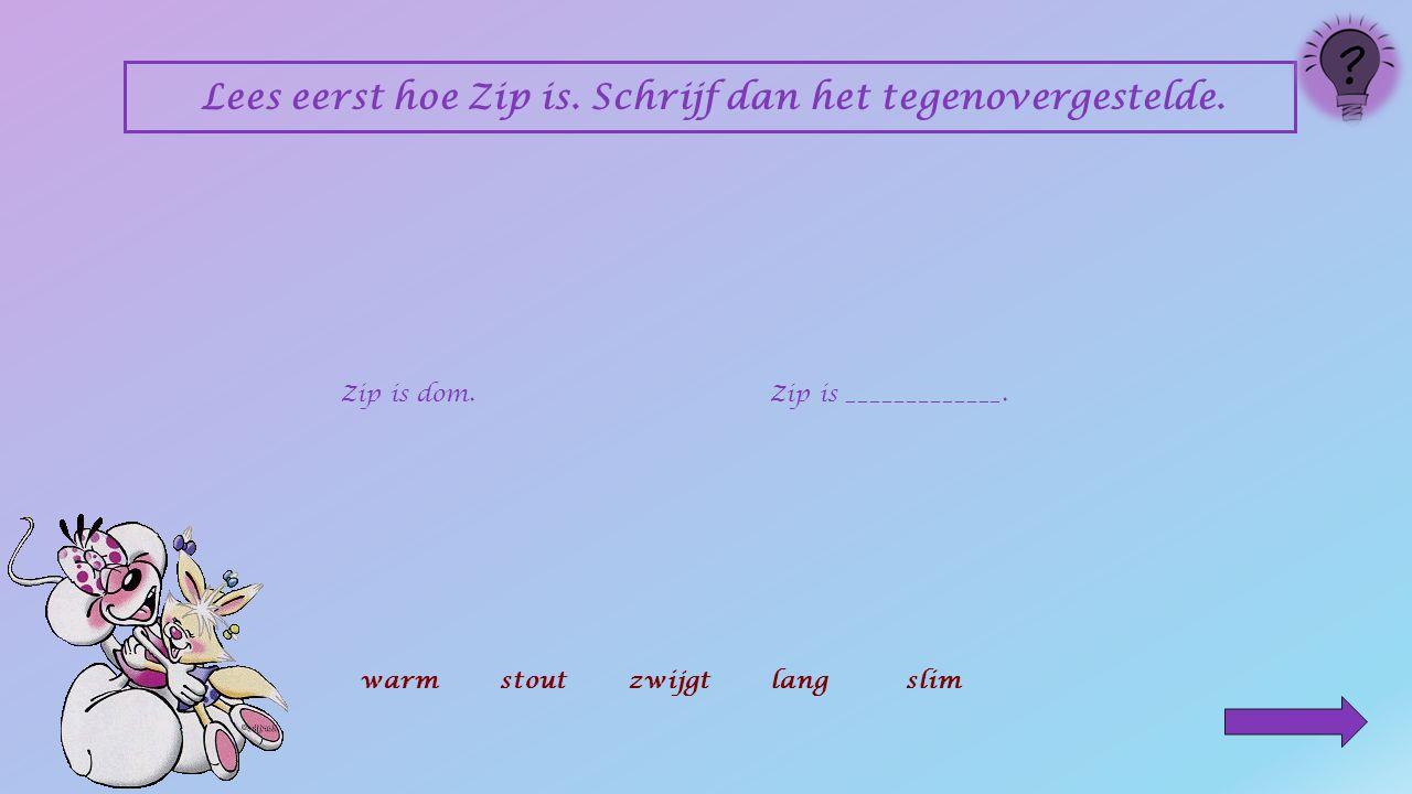 Lees eerst hoe Zip is.Schrijf dan het tegenovergestelde.
