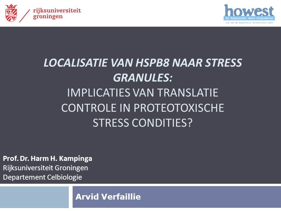 Overzicht  Introductie  Polyglutamine ziektes  HSPB8-BAG3 Complex  Stress Granules  Doel  Materiaal en Methode  Resultaten  Hypothese  Toekomstperspectieven