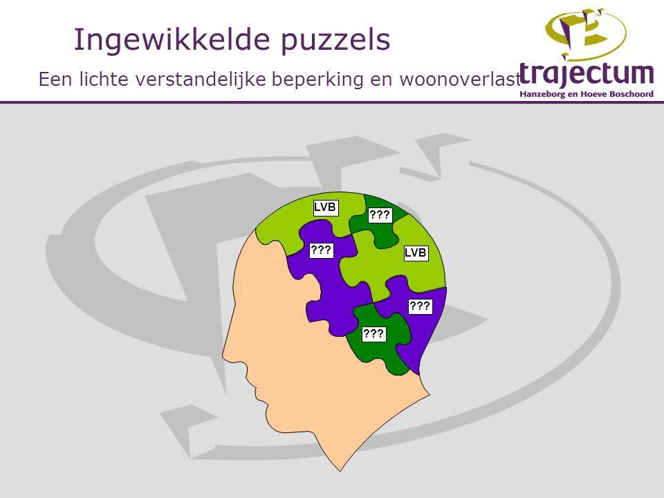 Ingewikkelde puzzels Een lichte verstandelijke beperking en woonoverlast LVB