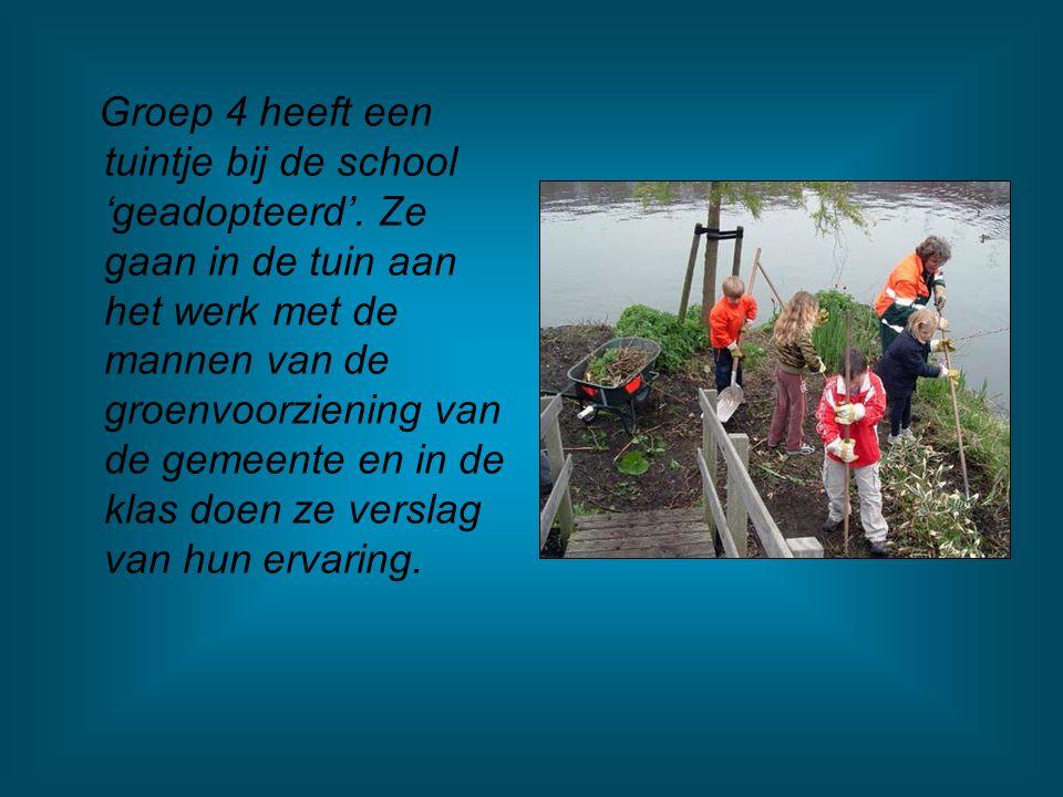 Groep 4 heeft een tuintje bij de school 'geadopteerd'.