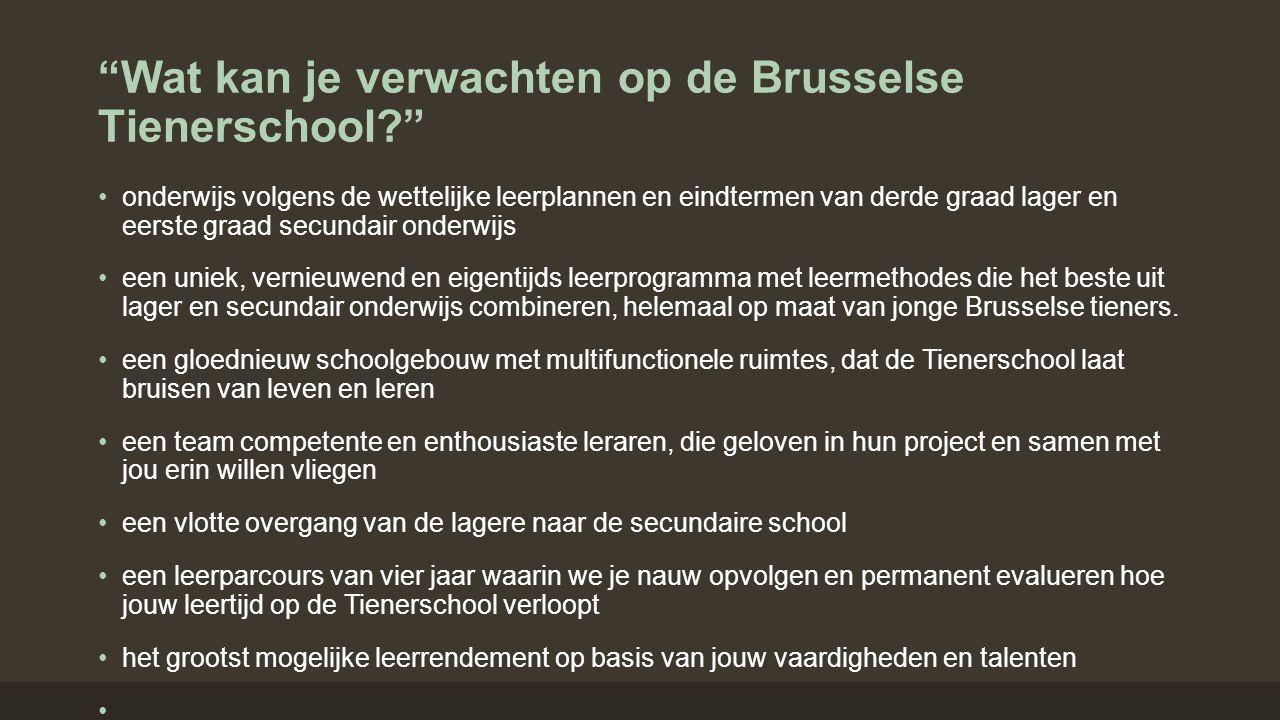 """""""Wat kan je verwachten op de Brusselse Tienerschool?"""" onderwijs volgens de wettelijke leerplannen en eindtermen van derde graad lager en eerste graad"""