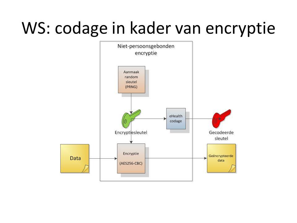 WS: codage in kader van encryptie
