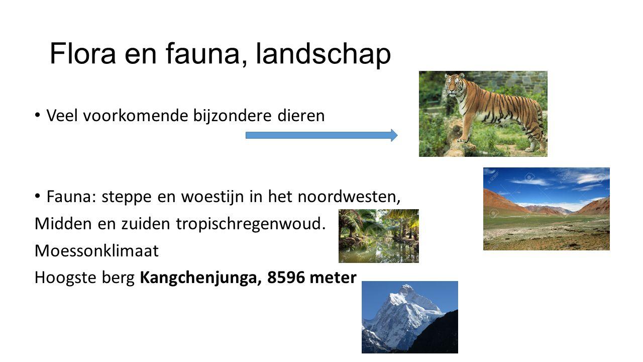Flora en fauna, landschap Veel voorkomende bijzondere dieren Fauna: steppe en woestijn in het noordwesten, Midden en zuiden tropischregenwoud.