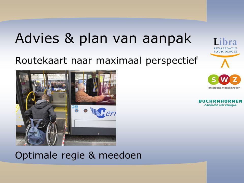 Advies & plan van aanpak Routekaart naar maximaal perspectief Optimale regie & meedoen