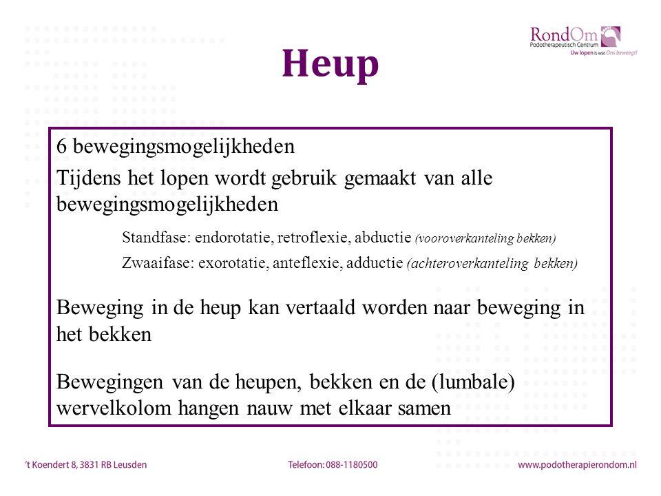 Heup 6 bewegingsmogelijkheden Tijdens het lopen wordt gebruik gemaakt van alle bewegingsmogelijkheden Standfase: endorotatie, retroflexie, abductie (v