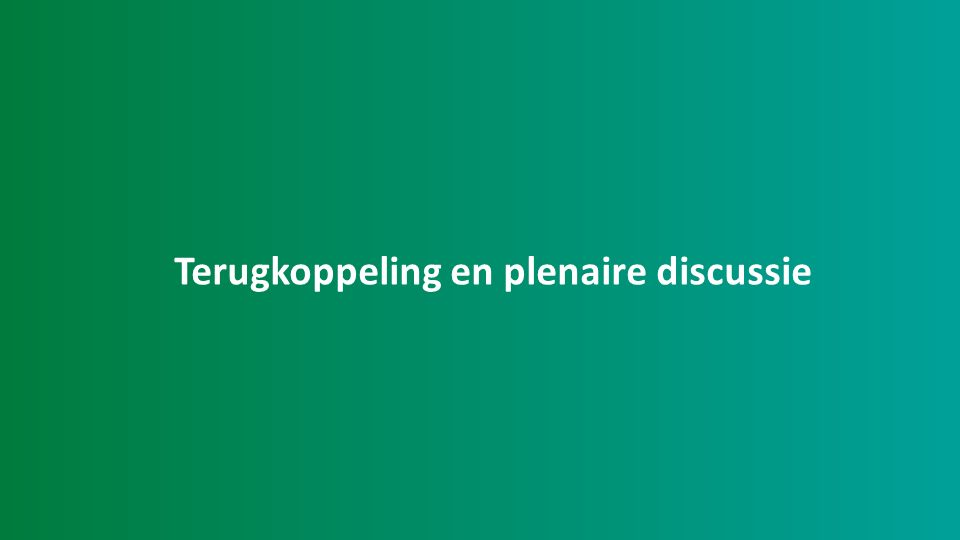 Terugkoppeling en plenaire discussie