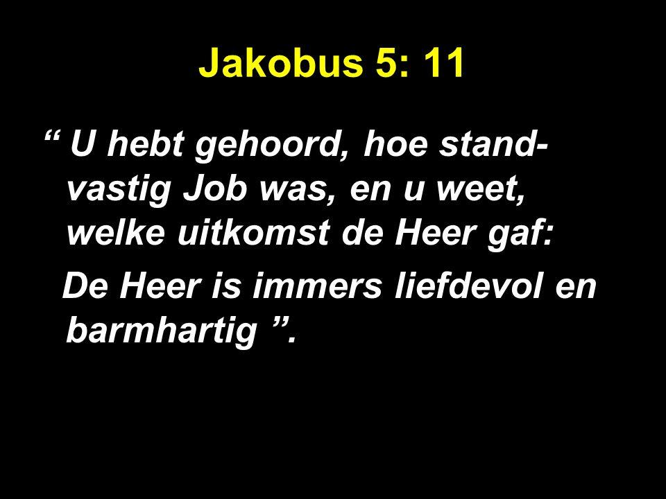 """Jakobus 5: 11 """" U hebt gehoord, hoe stand- vastig Job was, en u weet, welke uitkomst de Heer gaf: De Heer is immers liefdevol en barmhartig """"."""