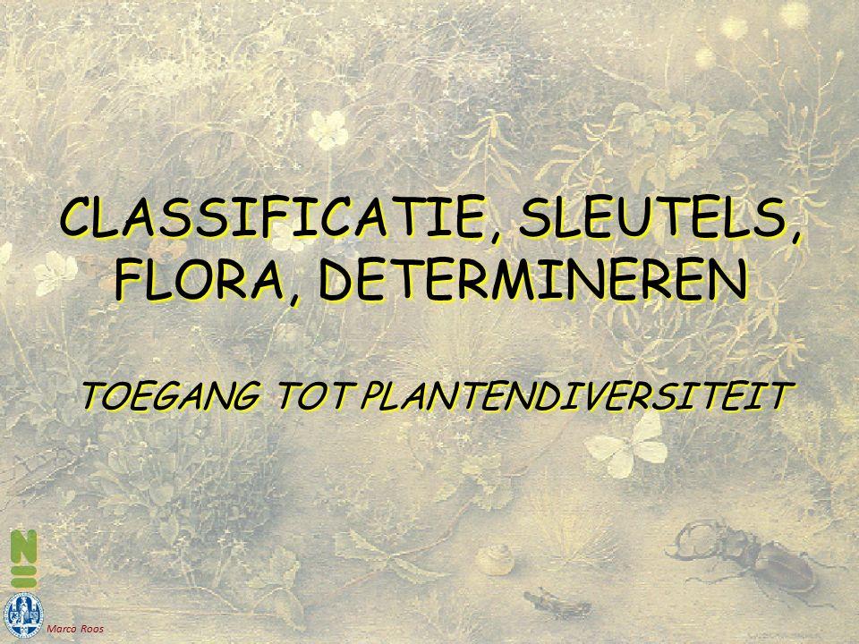 Marco Roos CLASSIFICATIE, SLEUTELS, FLORA, DETERMINEREN TOEGANG TOT PLANTENDIVERSITEIT