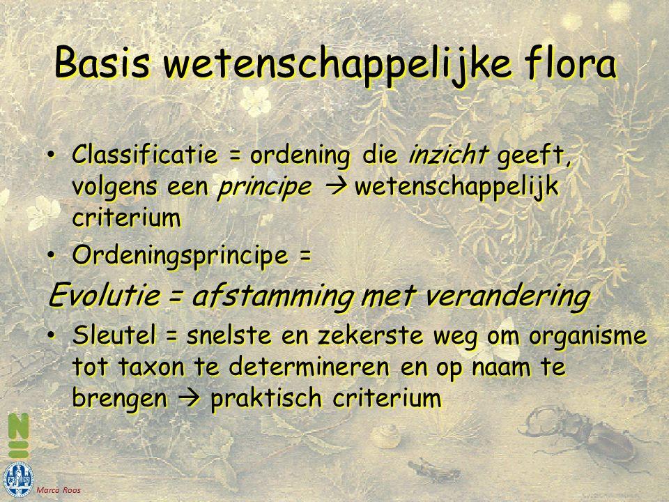 Marco Roos Basis wetenschappelijke flora Classificatie = ordening die inzicht geeft, volgens een principe  wetenschappelijk criterium Classificatie = ordening die inzicht geeft, volgens een principe  wetenschappelijk criterium Ordeningsprincipe = Ordeningsprincipe = Evolutie = afstamming met verandering Sleutel = snelste en zekerste weg om organisme tot taxon te determineren en op naam te brengen  praktisch criterium Sleutel = snelste en zekerste weg om organisme tot taxon te determineren en op naam te brengen  praktisch criterium
