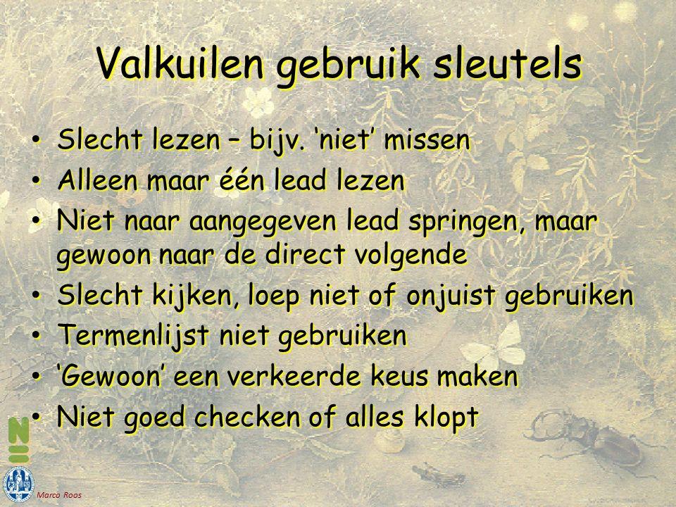 Marco Roos Valkuilen gebruik sleutels Slecht lezen – bijv. 'niet' missen Slecht lezen – bijv. 'niet' missen Alleen maar één lead lezen Alleen maar één