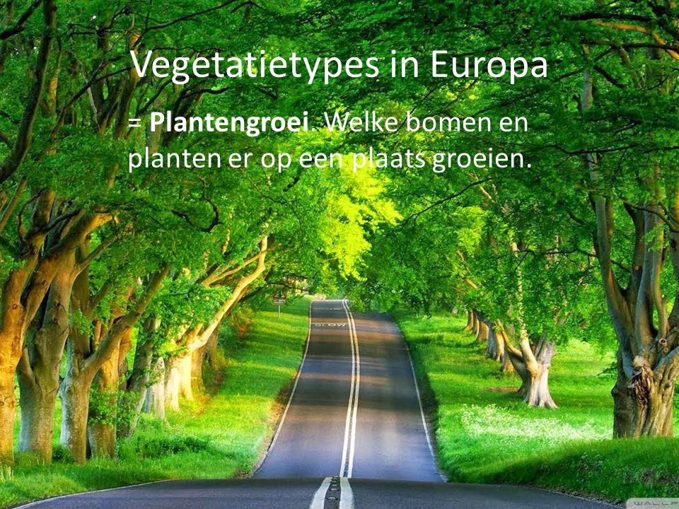 Vegetatietypes in Europa = Plantengroei. Welke bomen en planten er op een plaats groeien.