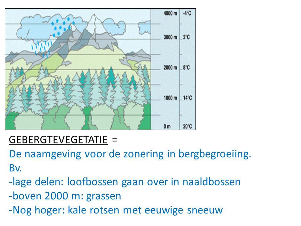 GEBERGTEVEGETATIE = De naamgeving voor de zonering in bergbegroeiing. Bv. -lage delen: loofbossen gaan over in naaldbossen -boven 2000 m: grassen -Nog