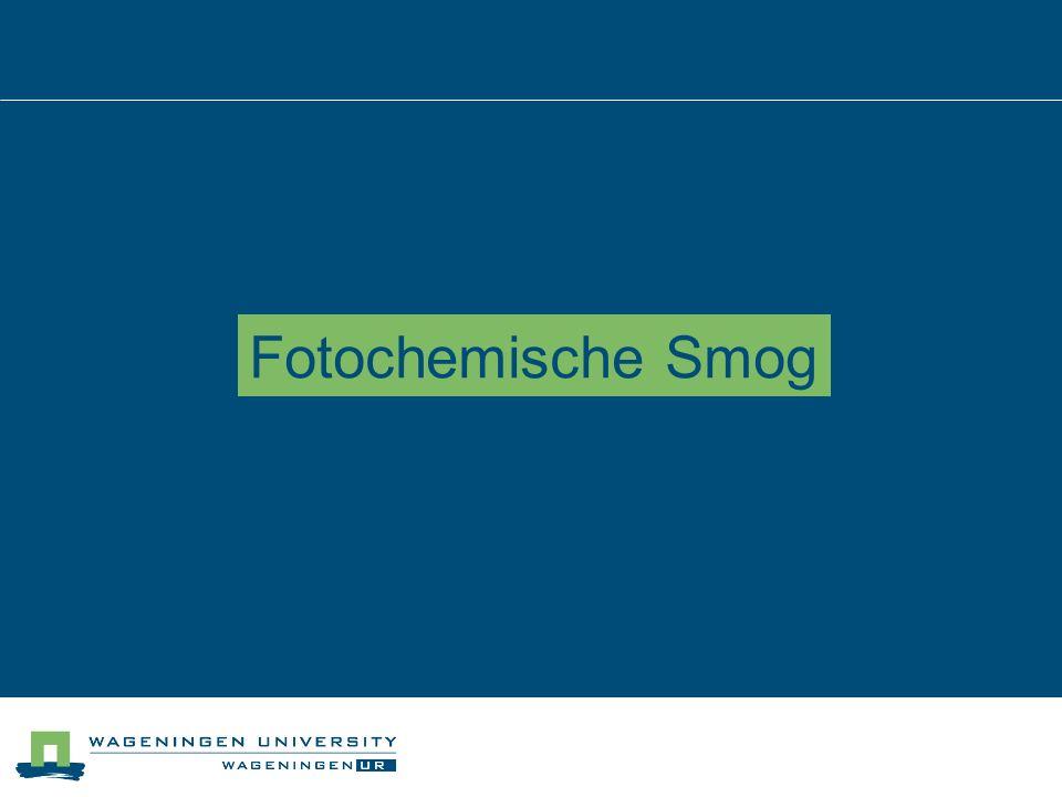 Fotochemische Smog