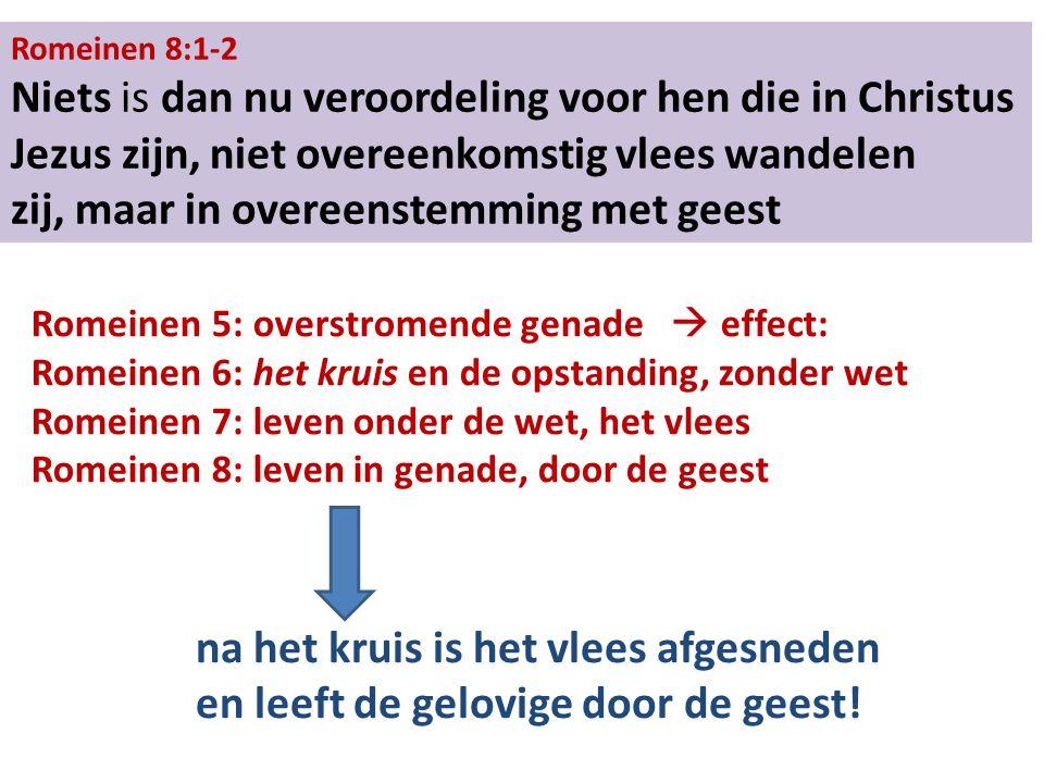 Romeinen 8:1-2 Niets is dan nu veroordeling voor hen die in Christus Jezus zijn, niet overeenkomstig vlees wandelen zij, maar in overeenstemming met geest Romeinen 5: overstromende genade  effect: Romeinen 6: het kruis en de opstanding, zonder wet Romeinen 7: leven onder de wet, het vlees Romeinen 8: leven in genade, door de geest na het kruis is het vlees afgesneden en leeft de gelovige door de geest!
