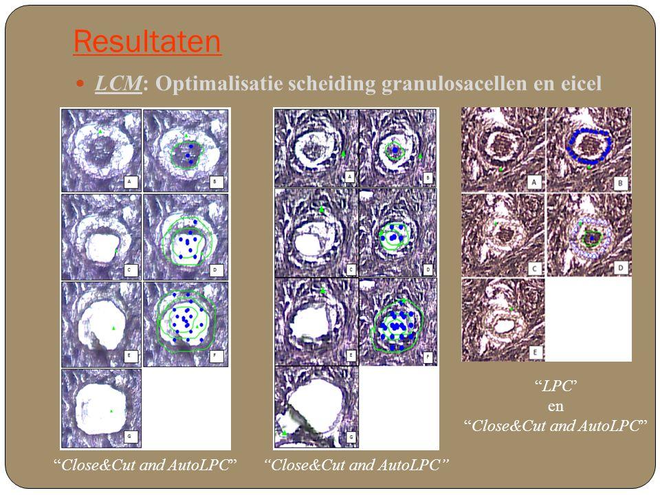 Resultaten Celcultuur: nagaan beïnvloeding gedeparaffiniseerde weefselcoupes o COV 434 human ovarian granulosa cell tumor Schieten van opeenvolgend aantal cellen: 10 50 100 500