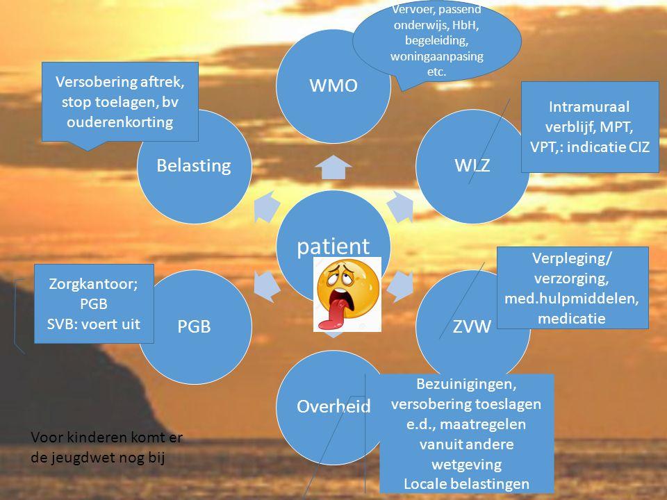 patient WMOWLZZVWOverheidPGBBelasting Vervoer, passend onderwijs, HbH, begeleiding, woningaanpasing etc.