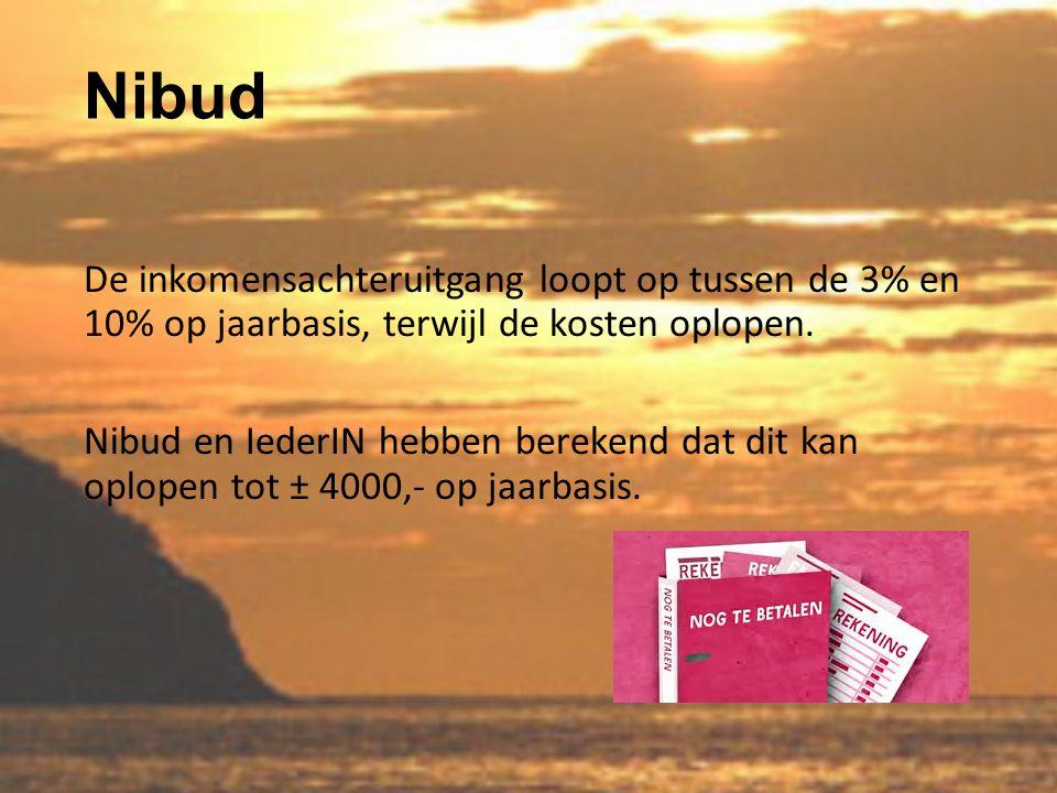 Nibud De inkomensachteruitgang loopt op tussen de 3% en 10% op jaarbasis, terwijl de kosten oplopen.