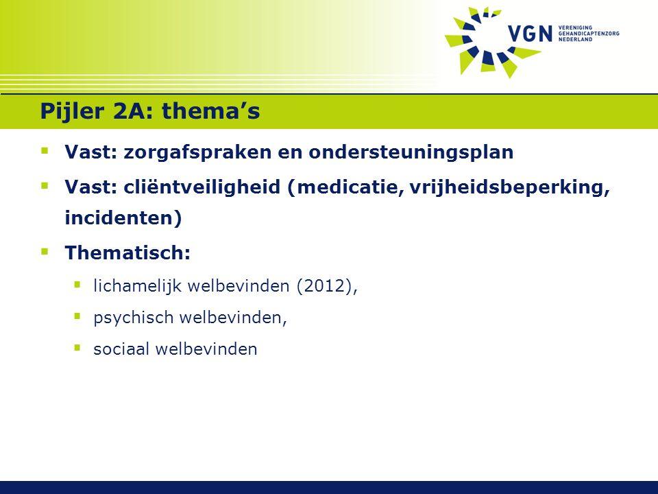 Pijler 2A: thema's  Vast: zorgafspraken en ondersteuningsplan  Vast: cliëntveiligheid (medicatie, vrijheidsbeperking, incidenten)  Thematisch:  lichamelijk welbevinden (2012),  psychisch welbevinden,  sociaal welbevinden